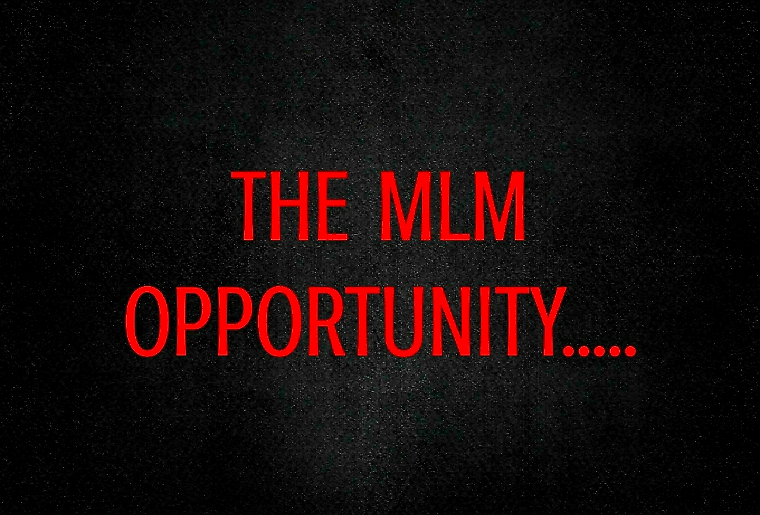 THE MLM OPPORTUNITY Graphic