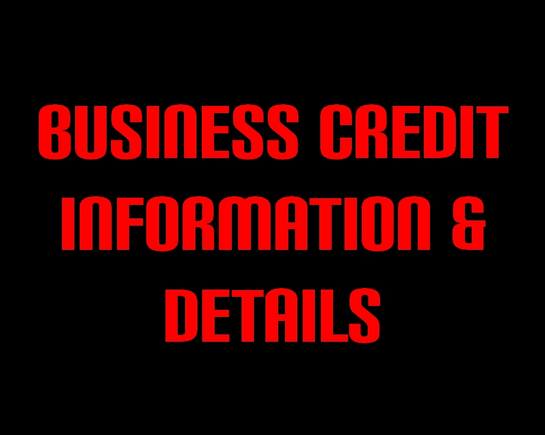 BUSINESS CREDIT INFORMATION & DETAILS